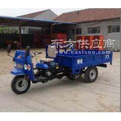 农用三轮车 方向盘式三轮车 柴油自卸电启动图片
