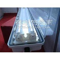 SFY51-防水防尘防腐全塑荧光灯图片