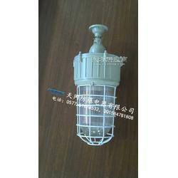 BAD82-N400gZ吊杆式防爆灯图片
