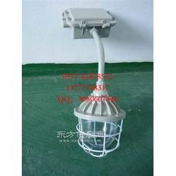 BAD51-N150b1Z弯杆式防爆灯图片