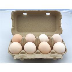鸡蛋盒 包装、广州翔森(在线咨询)、安阳蛋盒包装图片