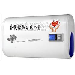 微电脑语音电热水器图片