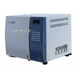 液化气天然气全分析仪带热值计算图片