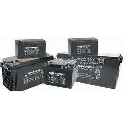 大力神蓄电池12-76 LBT大力神蓄电池图片