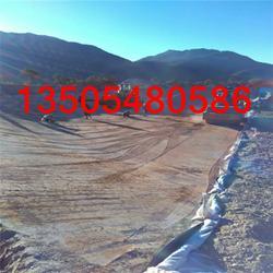 加拿大土工膜|土工膜|进口土工膜销售商(查看)图片