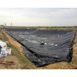 泰安恒瑞值得信赖-0.75mm景观湖土工膜图片