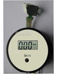 供应泰科TG2000-2不带控制充气泵图片