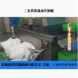 诸城盛世铭翔(在线咨询)、温州盐水注射机、盐水注射机报价图片