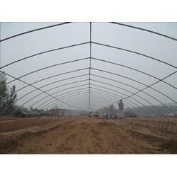 宜興通鋼鐵-大棚鋼管-農業大棚鋼管圖片