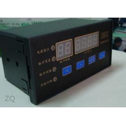 睿遠機電 可編程脈沖控制儀-脈沖控制儀圖片
