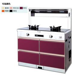 蒂米迦十大品牌加盟(图)、厨卫电器知名品牌、保山厨卫电器图片