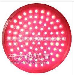 200mm红满屏信号灯灯芯 红色交通灯灯芯图片