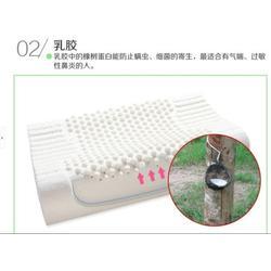 进口泰国天然乳胶枕头|晨枫枕业|台州泰国天然乳胶枕头图片