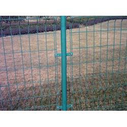 隆安护栏网(图)|道路双边丝护栏网|双边丝护栏网图片