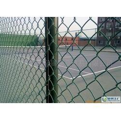 安平体育场围网、体育场围网、隆安护栏网(查看)图片