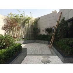 西安酒店屋顶花园植物设计,西安酒店屋顶花园,陕西观源景观设计图片