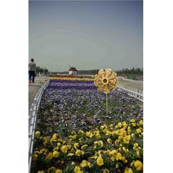 陕北乡村旅游开发策略,淳化陕北乡村旅游,陕西观源景观设计图片