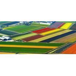 宝鸡农业观光旅游规划|宝鸡农业观光旅游|陕西观源景观设计图片
