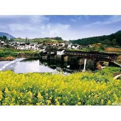 户县美丽乡村-陕西观源景观设计-户县美丽乡村主题策划图片