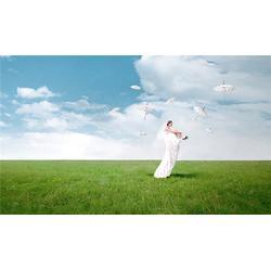 阴天能拍婚纱照吗?,米兰摄影,楼塔镇 拍婚纱照吗图片