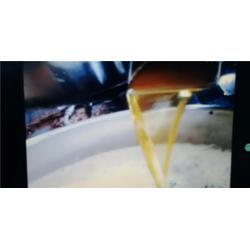 河南能达,品牌专利|全自动油渣分离机|南乐县油渣分离机图片