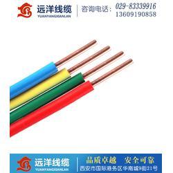 BV铜塑线 _阎良BV布电线_远洋电线电缆图片