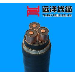 西安电力电缆厂家-电力电缆-远洋电线电缆(查看)