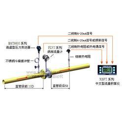 西森自动化 饱和蒸汽计量系统专家-饱和蒸汽计量系统图片