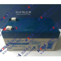 供应型号PS-6360 6V 1800mA Power-Sonic铅酸蓄电池图片