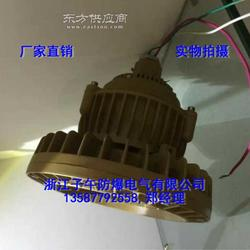 免维护节能大功率LED防爆灯80W 厂家供应图片