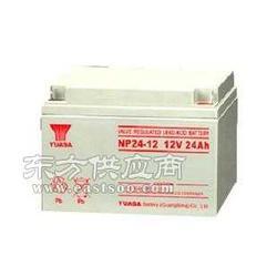 汤浅蓄电池NPL165-12型号图片