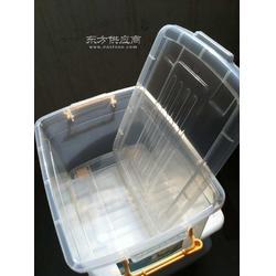 供应4透明PP料收纳箱多用箱空间大质量好耐摔打厂家直销选兴丰图片