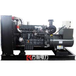 供应300KW上柴系列柴油发电机组厂家直销图片