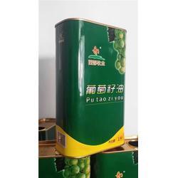 龙波森金属包装 山东山茶油铁罐-铁罐图片