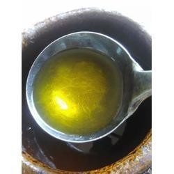 油茶苗圃基地(图)_金浩茶油招聘_茶油图片