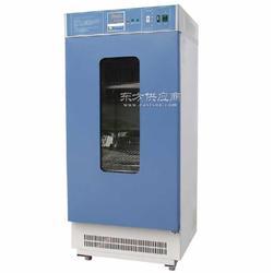 MJ-150-I型霉菌培养箱 数显霉菌培养箱图片