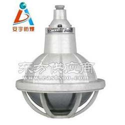 FAD-S-B60/B100防水防尘防腐灯壁式安装图片