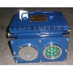 KXB-1A矿用声光语言报警装置指示灯和扬声器图片