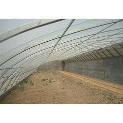 田润蔬菜(图),阳光温室大棚设计,阳光温室大棚图片