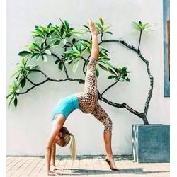 未来路沿线热瑜伽、沙琳42度热瑜伽、商务内环瑜伽图片