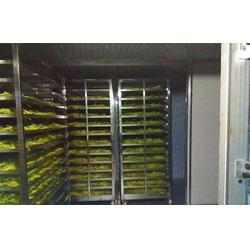 山楂片食品烘干机报价-黄南食品烘干-众胜食品设备图片