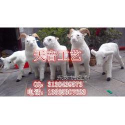 热卖仿真绵羊模型 绵羊桌面招财摆件 民间绵羊标本图片