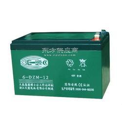天能蓄电池6-DZM-28图片