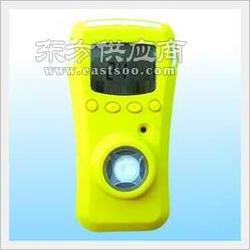 TN-10一氧化的氮气体检测仪图片