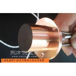 戈登GARDON圆箔式辐射热流传感器图片