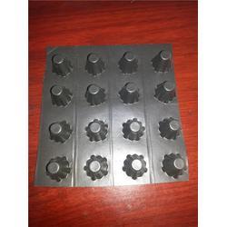 排水板 塑料排水板的 金驰华易(多图)图片