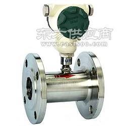 LWGB-65涡轮流量计/变送器图片