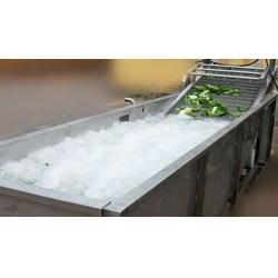 蔬菜清洗机|龙祥食品机械|苹果清洗机图片
