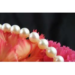 尚善谦(图),珍珠粉的,珍珠图片