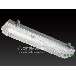 粵龍照明三防燈更多新款更多優價圖片